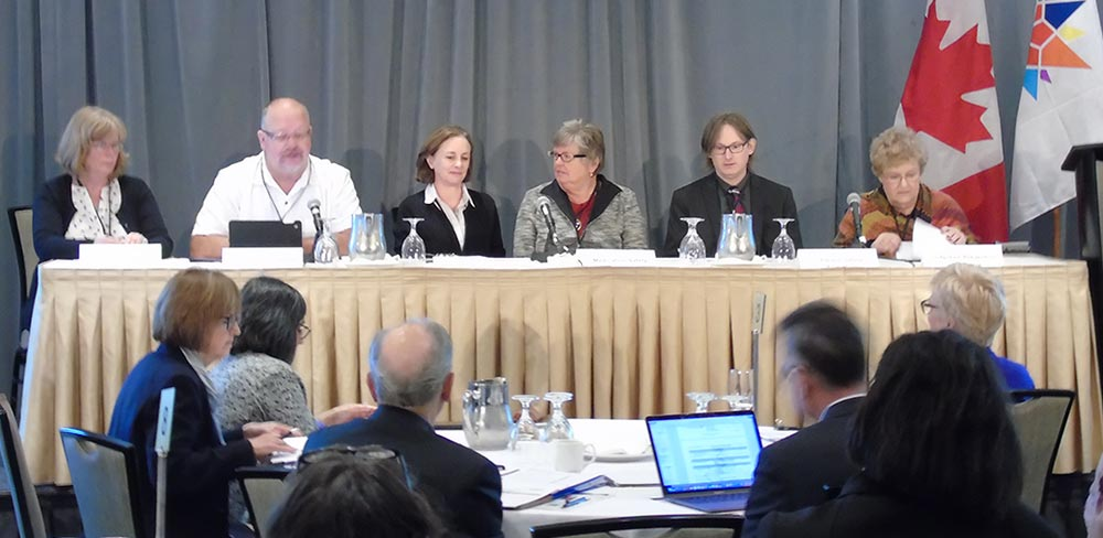National Patient Safety Consortium meeting (October 2017)